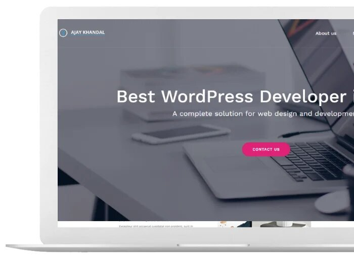 WordPress Development Skills